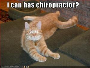 chiropractor-kitty